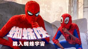 蜘蛛俠:跳入蜘蛛宇宙